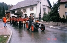 Narrentreffen 2000_2